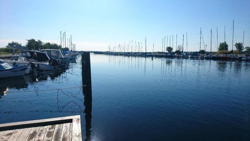 Hvidovre Havn havblik.JPG