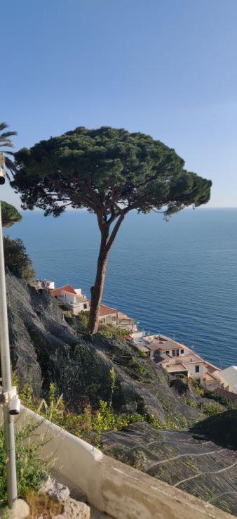 Amalfi11.jpg.cc5f5d284bc080489cc05b98a1dc8508.jpg